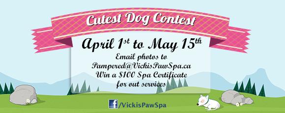 Enter our Facebook Contest